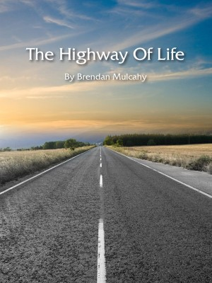 the_highway_of_life