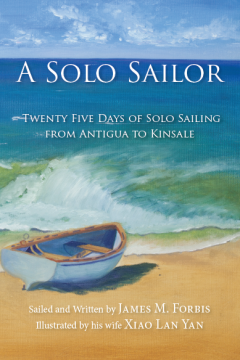 A Solo Sailor